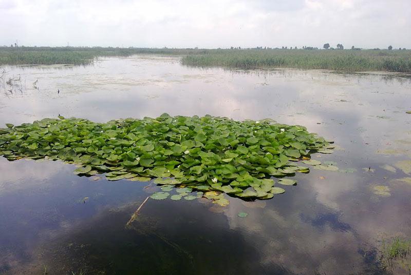 تالاب مرزنآباد