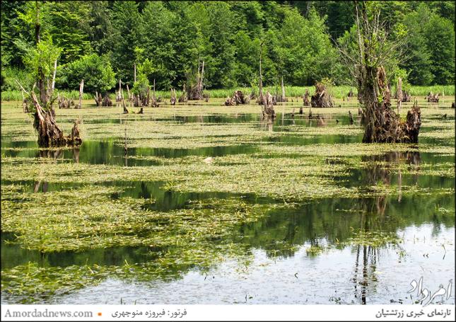 ظاهر وهمانگیز این دریاچه آنرا به دریاچهی ارواح نامور کرده است