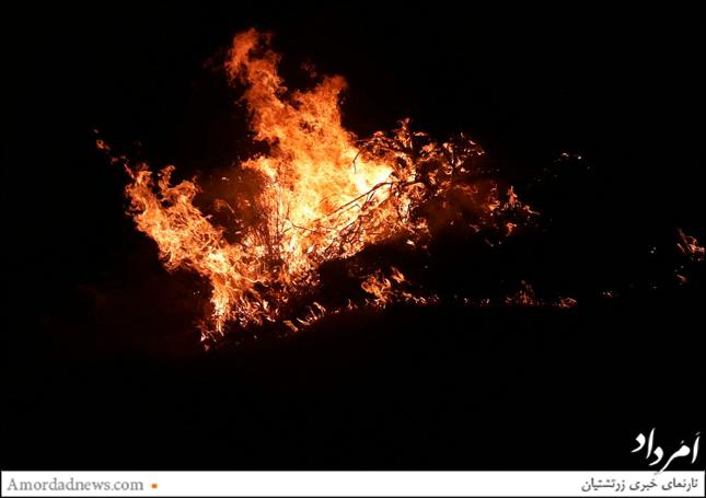 آتش 1500 هکتار از جنگل مروارید و مراتع را به کام خود فرو برد