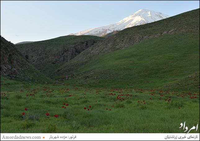 پلور منطقهای کوهستانی در استان مازندران است