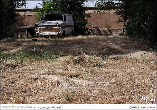 گستردگی علفهای خشک بیشتر در بخشهای غربی آرامگاه مشاهده میشود
