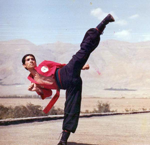 «كونگ فوتوآ» هنری آمیحته با فرهنگ ایرانی