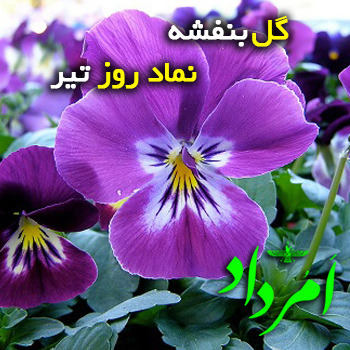 روز «تیر ایزد» سیزدهمین روز هرماه و چهارمین ماه هر سال، در سالنمای زرتشتی است.