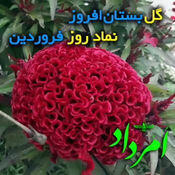فروردین یا فروشی؛ نوزدهمین روز هر ماه در گاهشمار زرتشتی