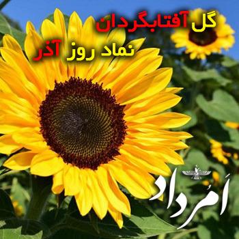 آذر ایزد؛ نهمین روز از شهریورماه در گاهشمار زرتشتی