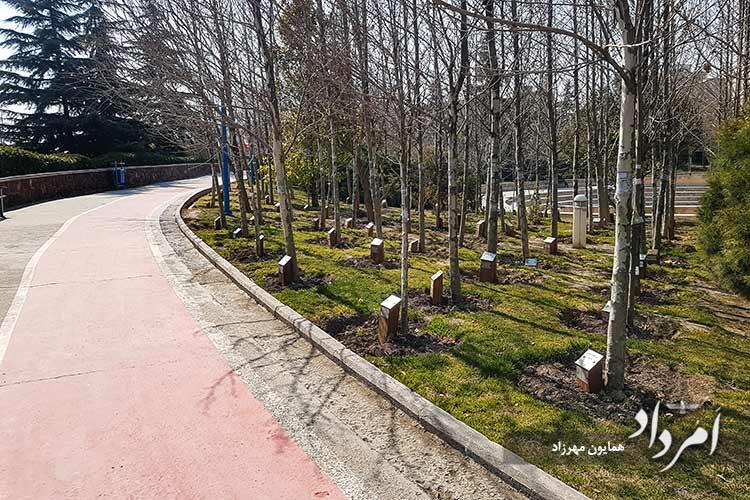 بنامگانه هنرمندان در دونوبت در بوستان گفتگو درختکاری شده است