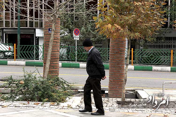 خیابان ولیعصر شمالی تهران