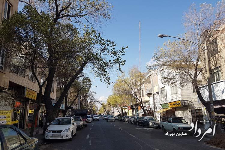 خیابان جیحون محله جی
