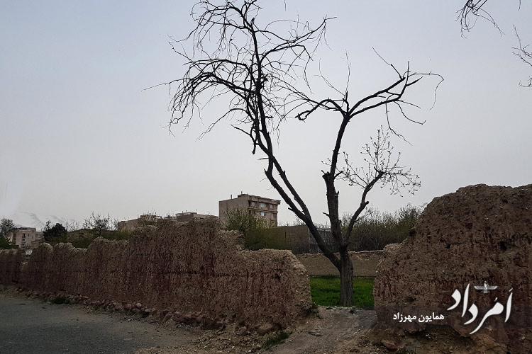 کوچه باغی های محله دریان نو مجاور طرشت